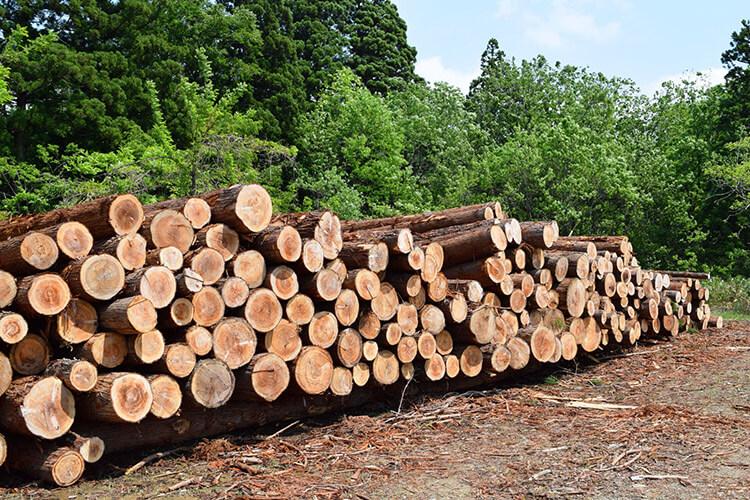 木材価格高騰