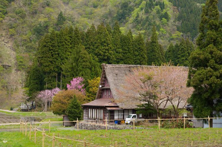 森と古民家