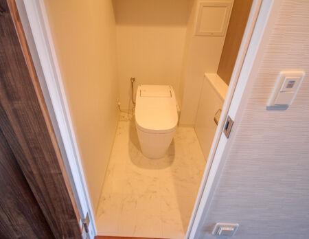 トイレも交換しています。パナソニックのアラウーノでお掃除も楽々!